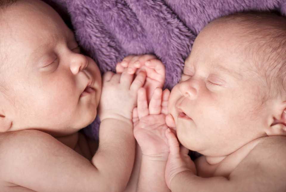 Infertility (IVF)