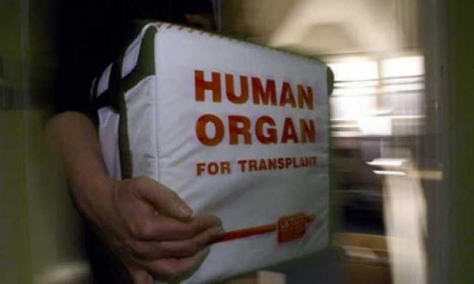 Organ Transplants in Turkey: A Destination for Saving Lives