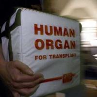 VisitandCare - Organ Transplant