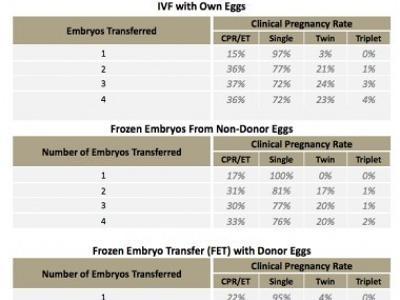 Tijuana IVF Success Rates