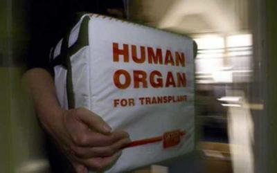 Organ Transplants in Turkey: A Destination for Saving Lives