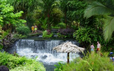 Eco Tourism; Improving the Environoment and Yourself